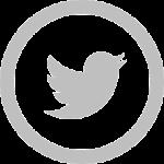iconmonstr-twitter-5-240
